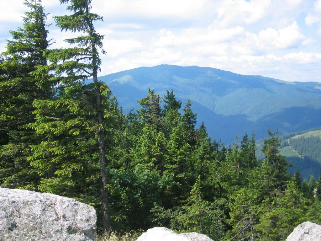 Der Berg Giumalau vom Rarau in Pojorâta