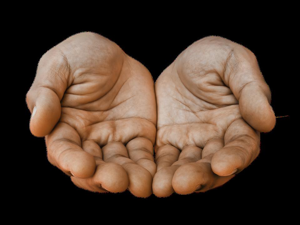 Nur zwei leere Hände ÜBER DIE BESIEDLUNG DER DEUTSCHBÖHMEN IN DER BUKOWINA